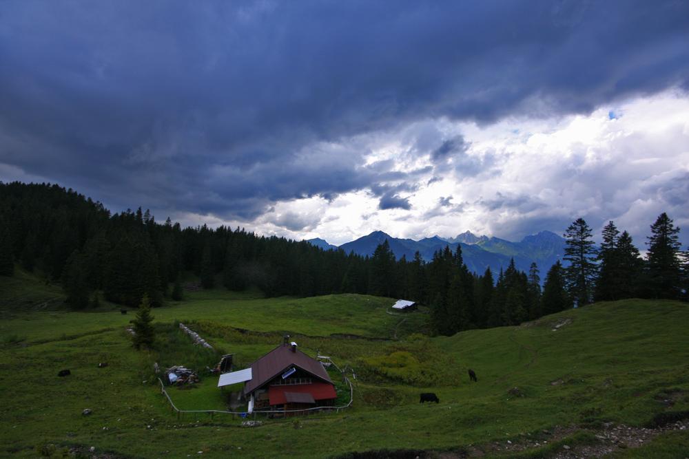 Gestern am Weg zum Thaneller schoben sich dicke Regenwolken am Himmel über der Rauchalpe vorwärts