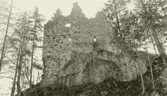 Ruine Burgberg