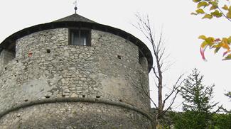 ehrenberg  falkenturm