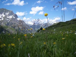 Monzabon-Alpe