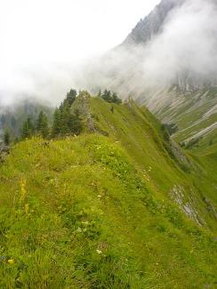 Tannheimer Durchquerung: Schneid - Westgrat