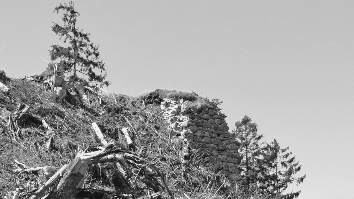 unvermutet weitläufig entpuppt sich das einstige Hornwerk in Form von Mauerresten im Bereich der Kniepassschanze