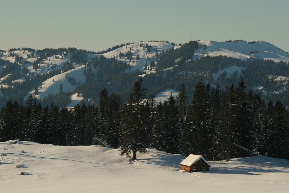 Ausblick vom Gipfelrücken des Schönkahlers gegen Westen zum Wertacher Hörnle