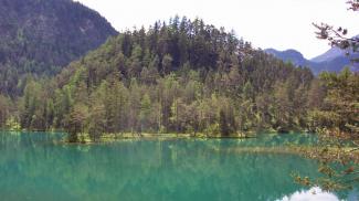 Insel im Fernsteinsee