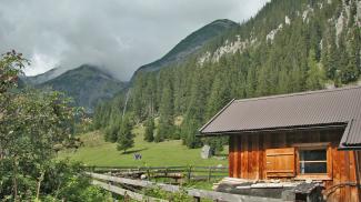 Zarge (Alpe)