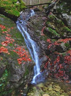 Reichenbachklamm - kleiner Wasserfall