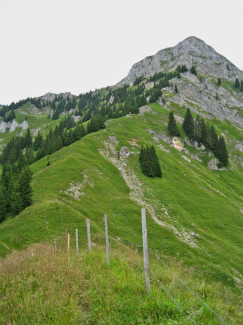 Schneid Steig über Südflanke