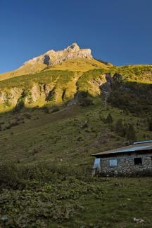 Ronigalpe und Tajaspitze