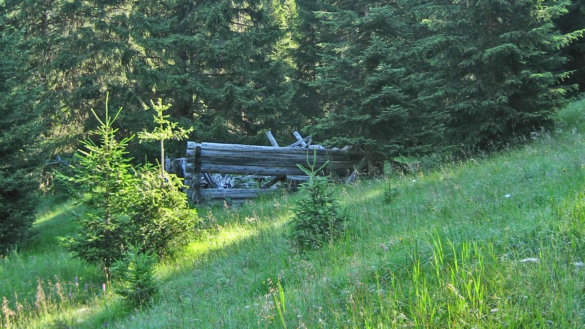 Bichlwaldhütte