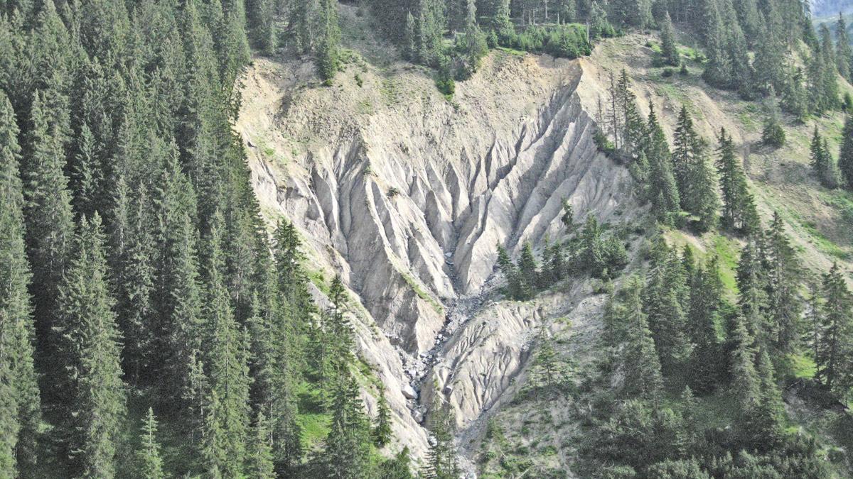 beinahe wie die Erdpyramiden in Südtirol nur ohne die charakteristischen Decksteine - scharf geschnitte Runsen im Bernhardstal