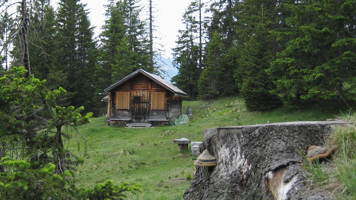 Pleishütte