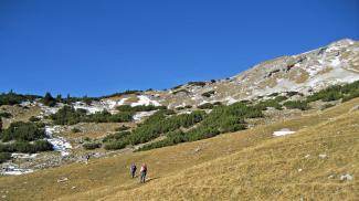 Aufstieg zum Pitzenegg