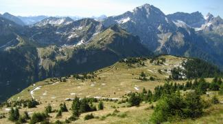 Plateau unterm Feigenkopf