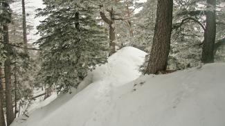 Abstieg vom Schelleleskopf