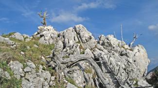 Gipfel Roter Stein
