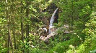 Alpstrudelfall