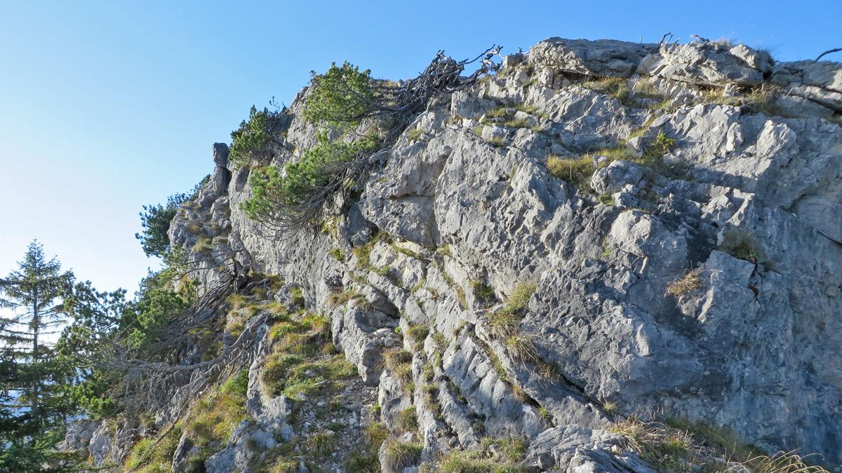 das Gras-Fels-Band am Einstein-Ostgrat gibt sich gutmütig