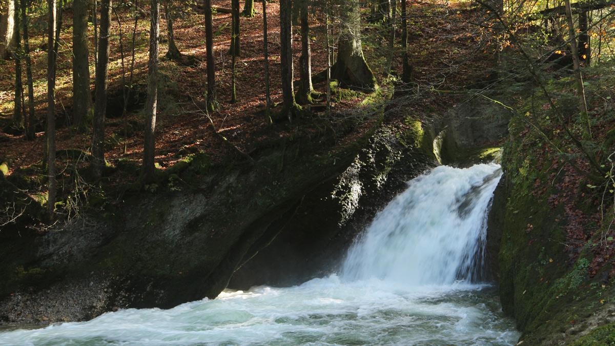 einer der Wasserfälle der Oberen Argen im Eistobel