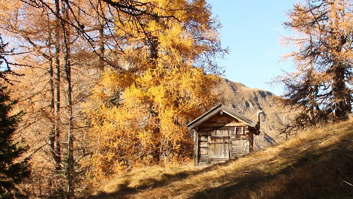 Schäferhütte Appenzell