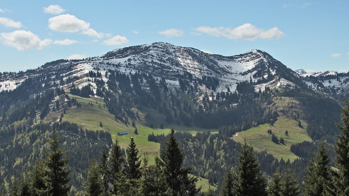 Blick auf das Gebiet der Buralpe - darüber der Buralpkopf (li.) und der Gündleskopf