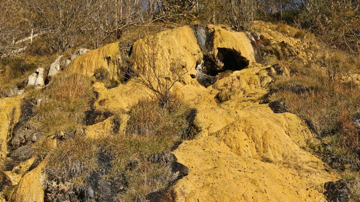 Hangwasser nimmt auf seinem Weg durch die Lingenauer Schotterterrasse Kalk auf. Das kalkübersättigte Wasser tritt an der Hangkante an die Oberfläche und reagiert mit dem Sauerstoff der Luft - es bildet sich Kalksinter, welche am Quelltuff-Lehrpfad als meterhohe, pilzförmige Felswände und Sinterbecken ausbilden
