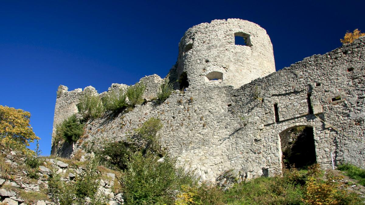 die Südmauer der Burg Ehrenberg