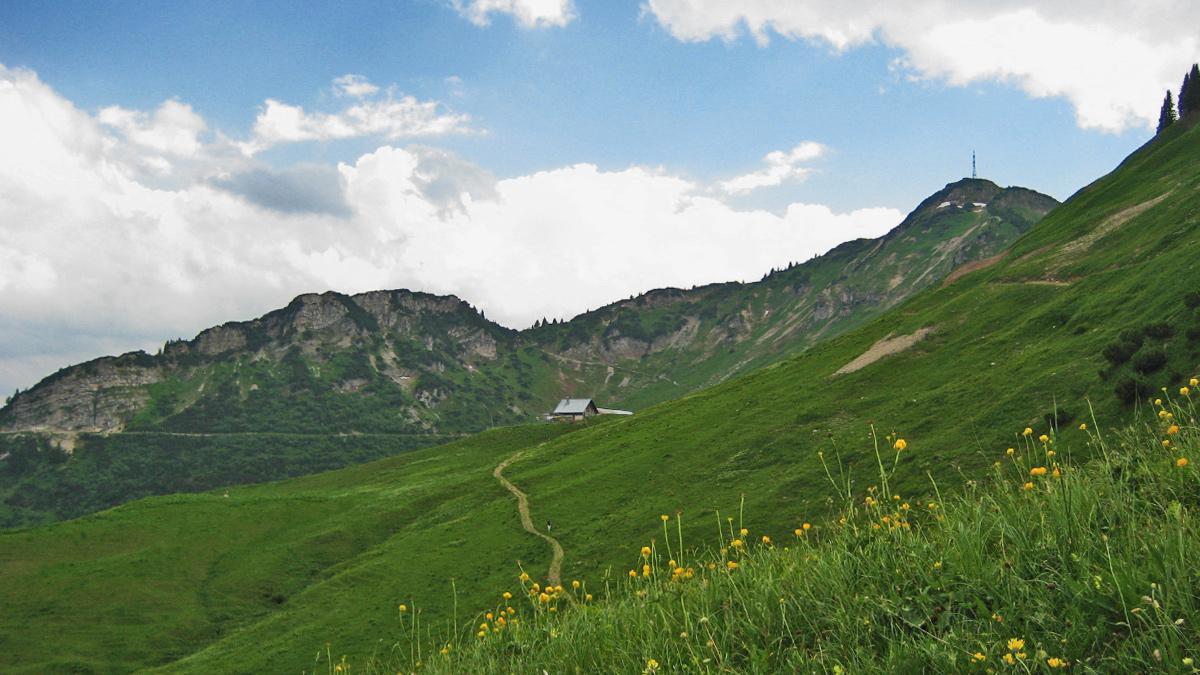 im weiten Kessel der Lechaschauer Alpe - im Hintergrund das Höfener Kreuzle (li.) und der mit einem Sendemast bestandene Hahnenkamm