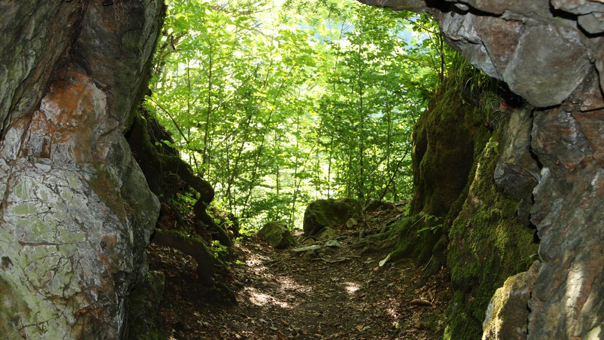 Ausblick aus der Höhle am Ochsenberg - den Grabungsfunden nach ernährten sich die steinzeitlichen Bewohner von der Jagd aber auch dem Fischfang, da das heutige Tiefenbacher Tal zu jener Zeit einen großen See ausbildete