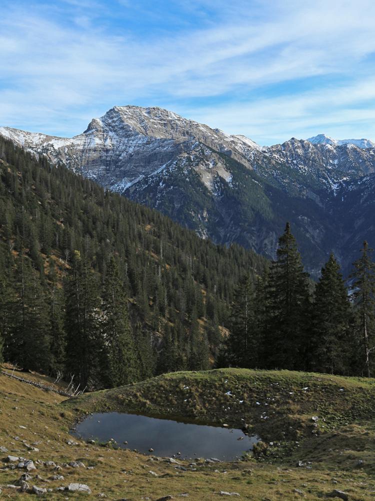 Ausblick von der Hirschlache südlich des Lösertalkopfes hinüber zur Kreuzspitze