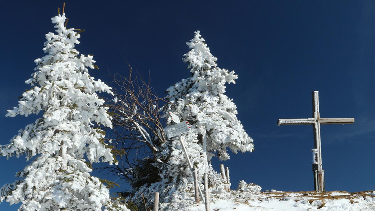 das Gipfelkreuz der Reuter Wanne im Frost-Mantel