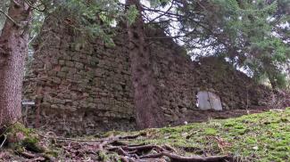 Ruine Nesselburg