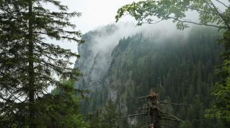 Straußberg-Westwand
