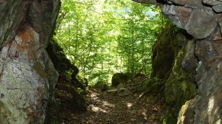 Höhle am Ochsenberg