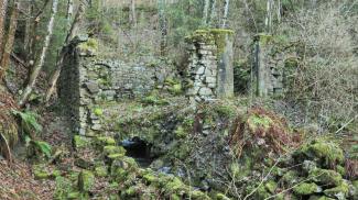 Katzenmühle