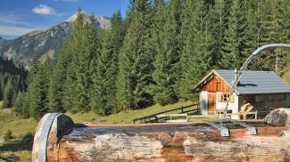 Kesselwaldhütte