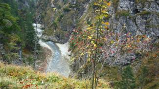 Weißenbacher Schlucht