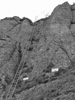 Steineberg Aufstiegsleiter