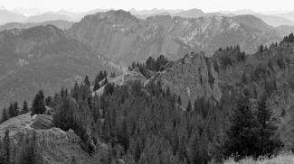 Verbindungsgrat zwischen Steineberg und Stuiben
