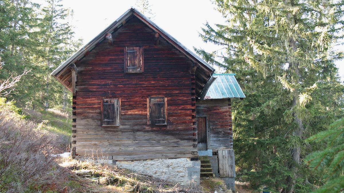 eine urige Hütte östlich des Piesenkopfs