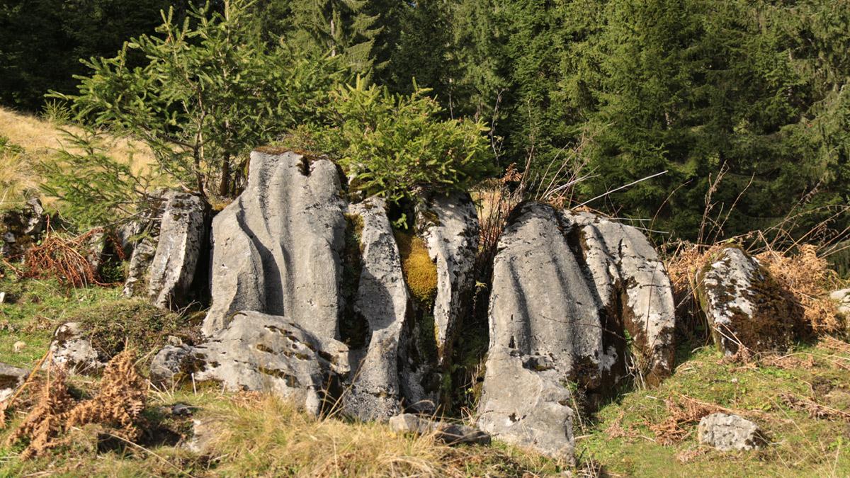 ausgewaschener Fels in Form von Karstgestein bei der Kindsbangetalpe
