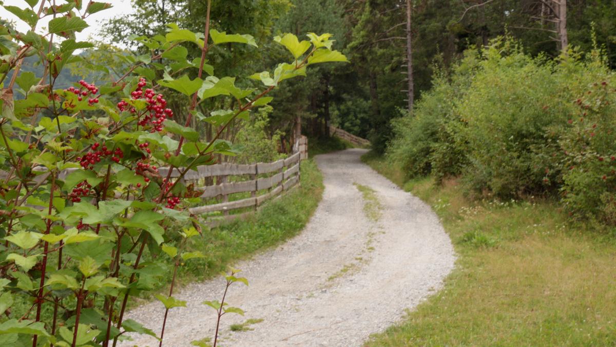 der 'alte Verlauf' der Salzstraße bei Telfs führte südlich der späteren Strecke am Meaderloch über Moritzen
