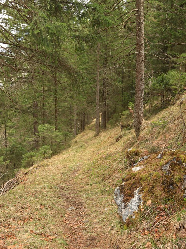der Höhenrainweg bei Ehrwald wurde sehr wahrscheinlich schon in römischer Zeit genutzt