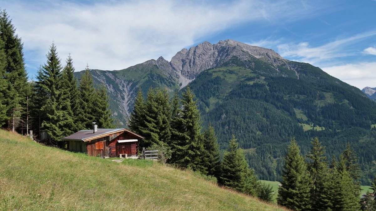 im Bereich der Hofalm oberhalb des Bacher Weilers Seesumpf, im Hintergrund die Garten- und Ruitelspitze