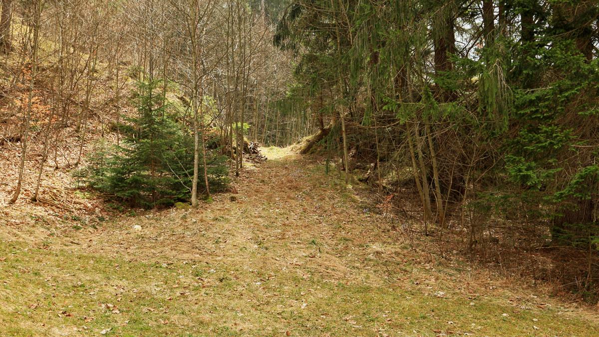 wahrscheinlicher Durchlass der Via Claudia Augusta am Huttlersberg oberhalb des Lechfalls