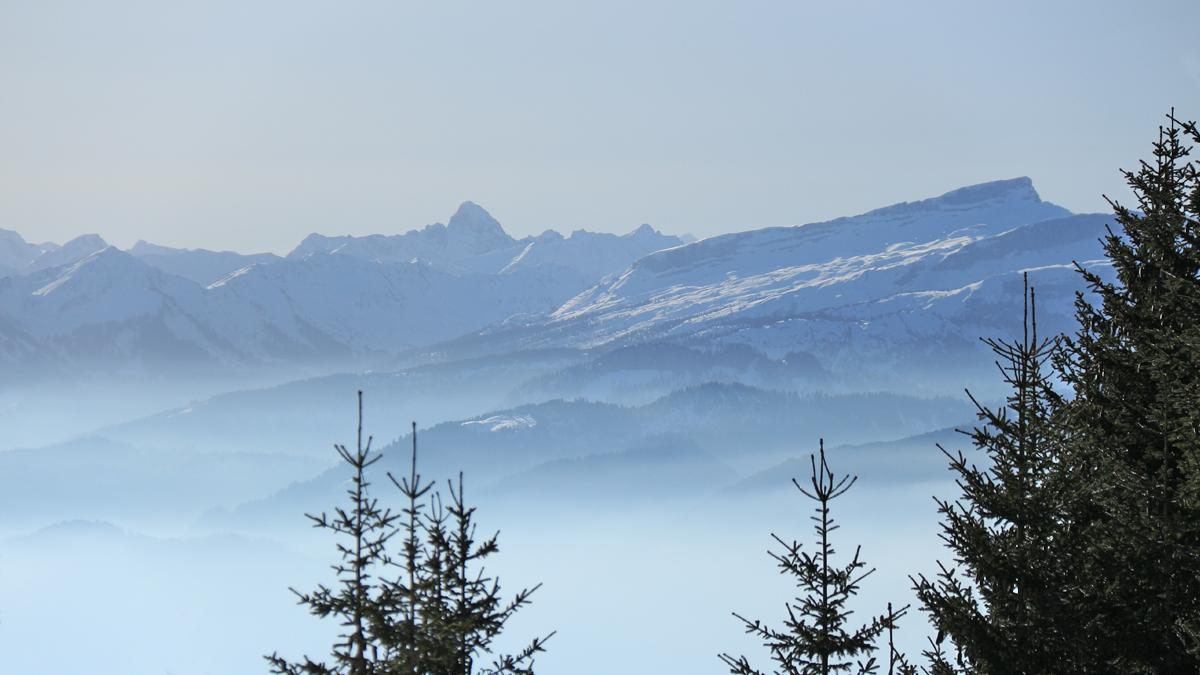 Gipfelblick vom Boaleskopf gegen Süden hin zu Widderstein (li.) und Hoher Ifen
