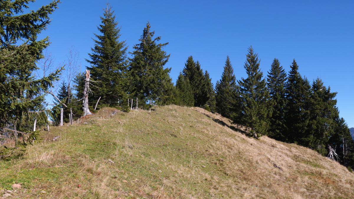 der Östliche Koppachstein bildet lediglich eine Kuppe bzw. einen Grasbuckel aus