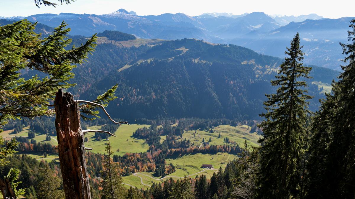 der gegen Süden gerichtete Gipfelblick vom Westlichen Koppachstein hinab ins Tal der Bolgenach