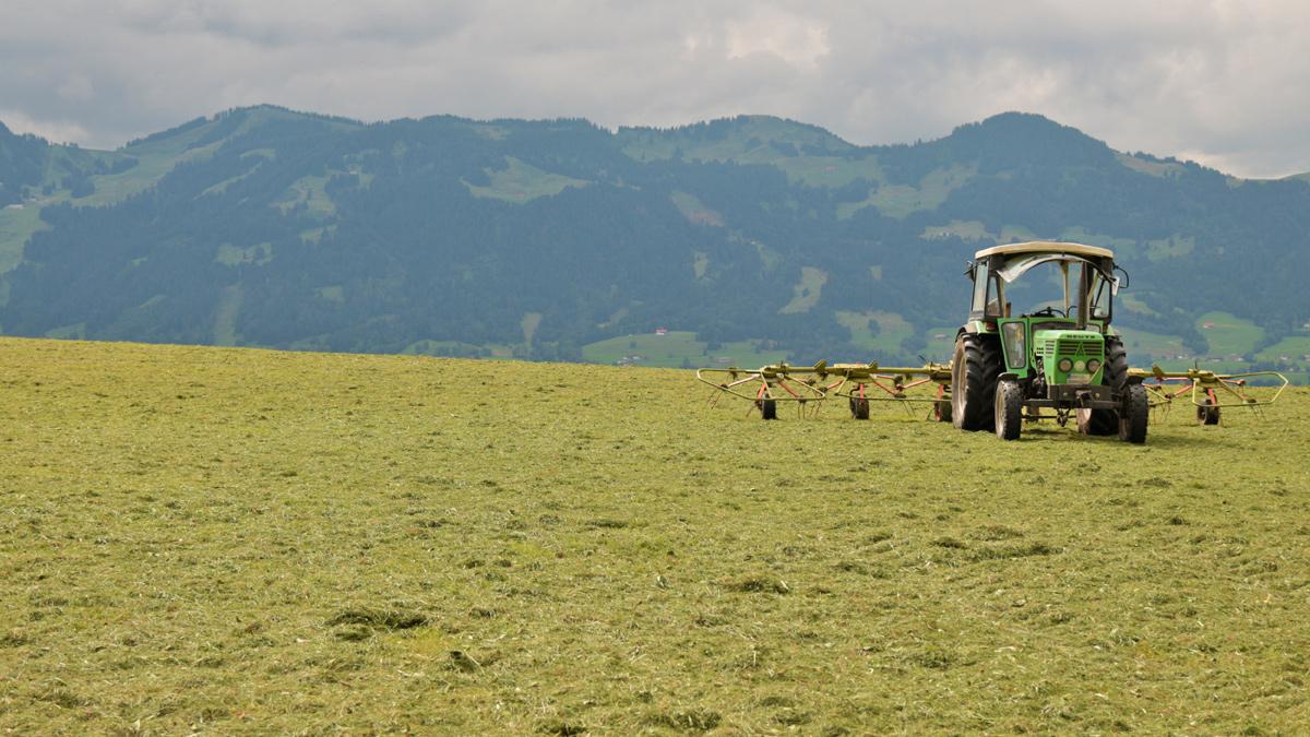 heuernte traktor hörnergruppe