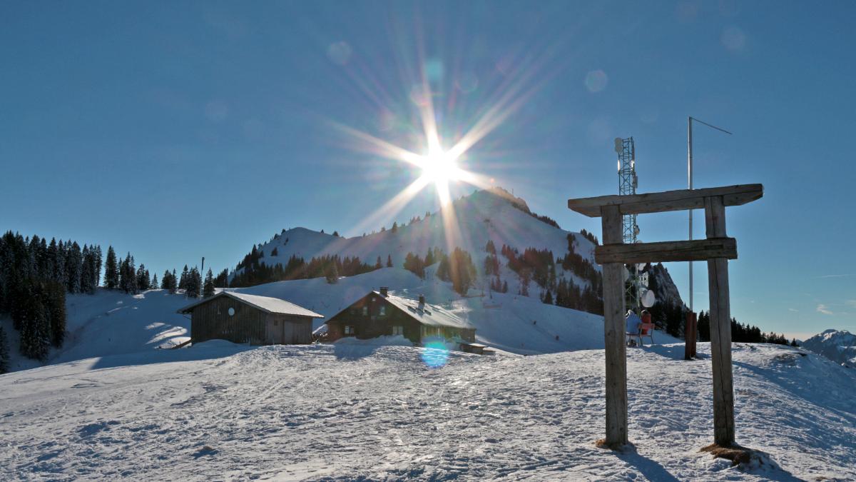 Ausblick von der Grüntenhütte gegen Westen hinauf zum Grünten - im Vordergrund eine Porta Alpina