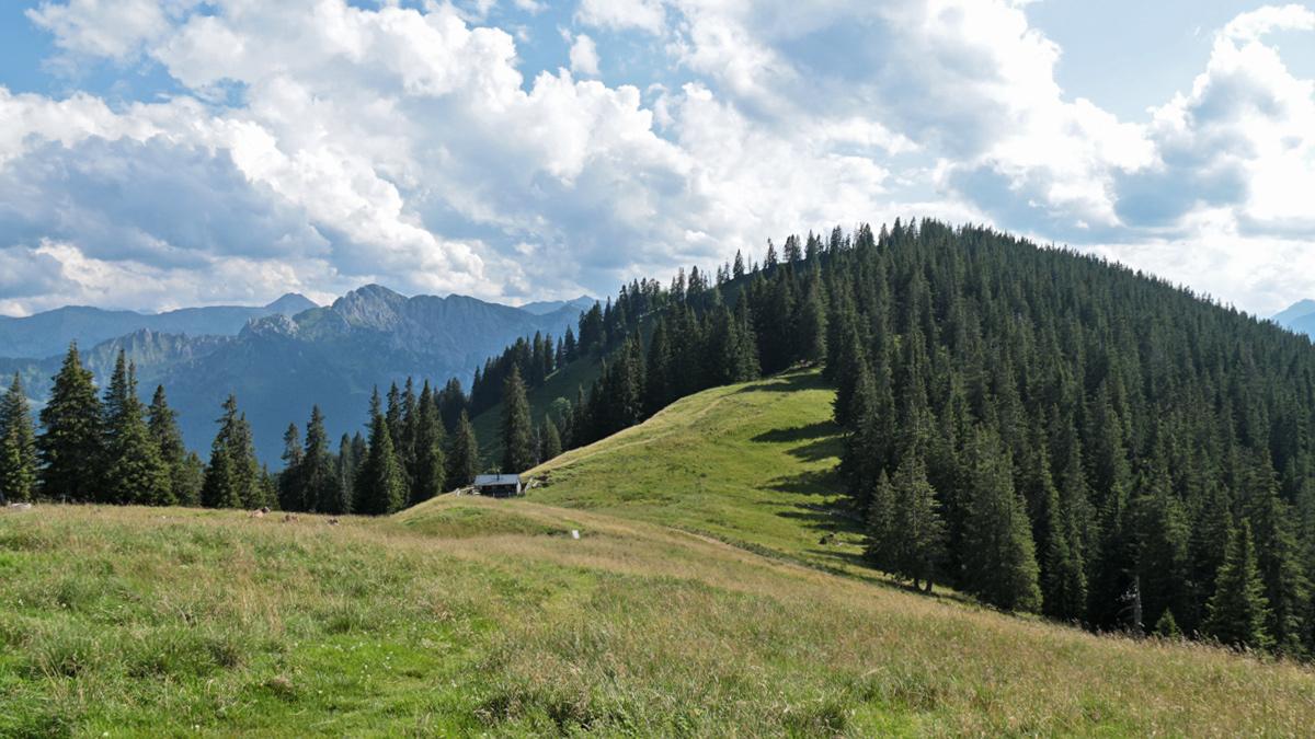 Blick von der Niederbleick hinab in den Sattel zu der Bleickhütte und zur dahinter liegenden waldreichen Hohen Bleick